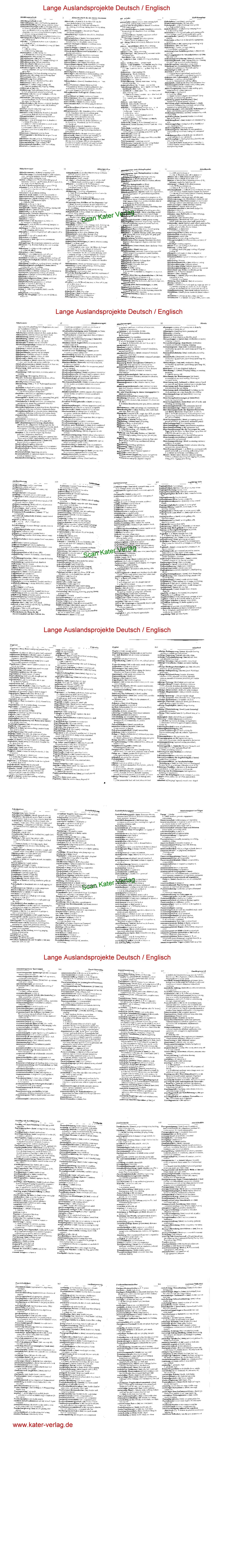 Wörterbuch Auslandsprojekte Deutsch-Englisch DE-EN